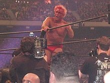 A bloody Flair at WrestleMania X8.